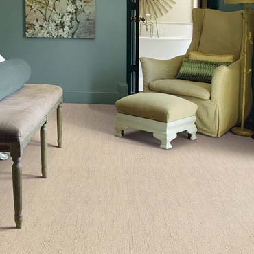 Caress Carpet by Shaw | Dublin, GA