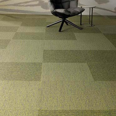 Patcraft Commercial Carpet | Dublin, GA