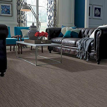 Anso® Nylon Carpet | Dublin, GA